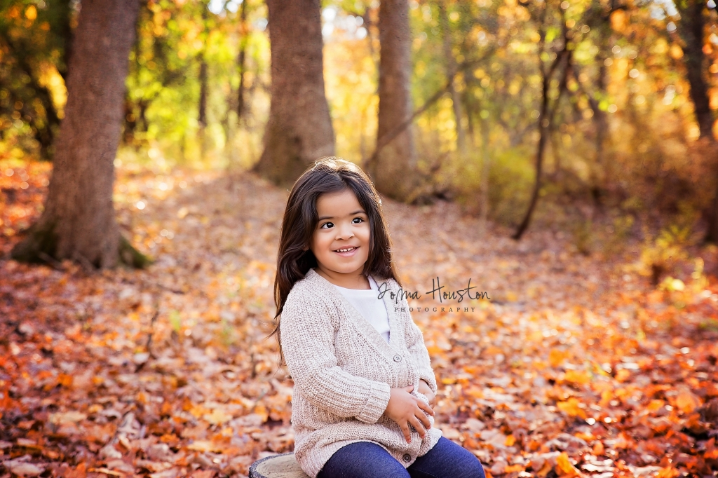 Fall Autumn Photography Sessions Chicago